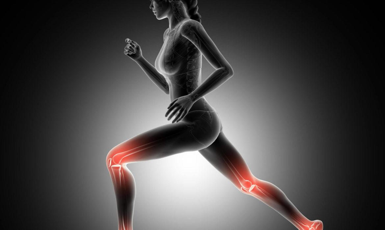 Une ostéochondrite est une anomalie au niveau des zones de croissance des os et du cartilage.